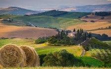 landschap-224x140